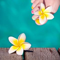 Pied de femme et frangipanier, fond piscine
