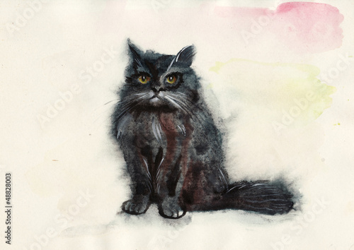 Watercolor cat