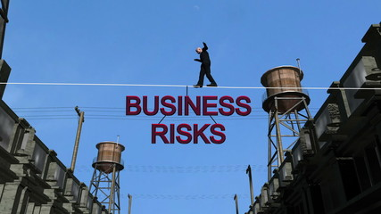 Business Risks