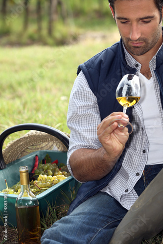 Vintner with glass in the field