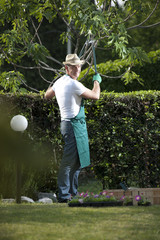 Gardener working in garden