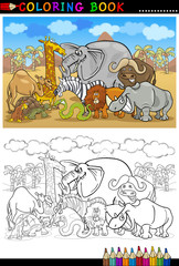 safari wild  animals cartoon for coloring book