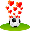 Fußball Fan Herz