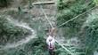 Senior man navigating a rope suspension bridge