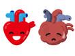 健康な心臓と不健康な心臓