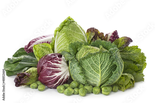 Assortment of fresh cabbages