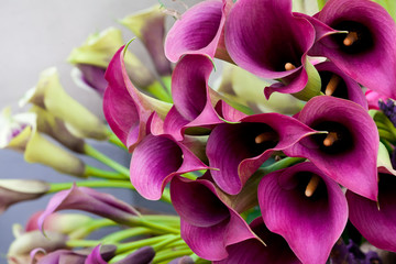 Beautiful bouquet of calla lilies.