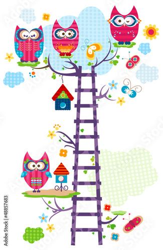 fototapeta na ścianę Owl `s drzewa