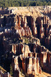 vertical view of Bryce Canyon