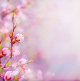 Fototapety art Beautiful spring blossoming tree on sky background
