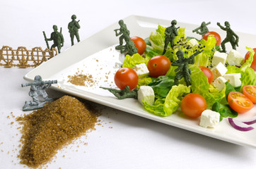 Diet and weight loss war with healthy food