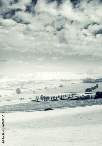 cloudy snow fields