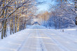 Snowy road in winter forest of Poland