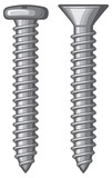 vector illustration of screws
