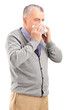 Mature man blowing his nose in a tissue
