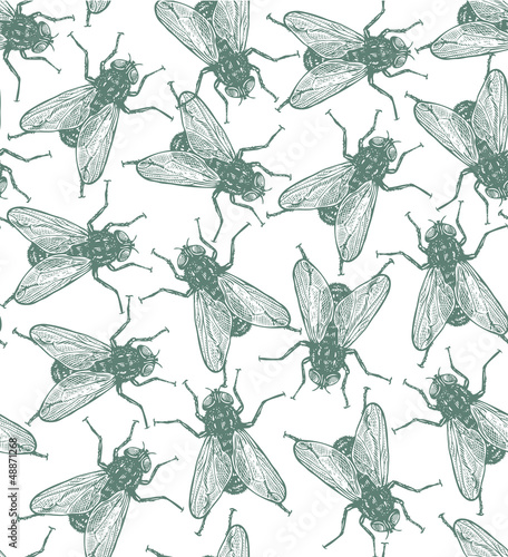Seamless vector flies pattern in vintage engraved style