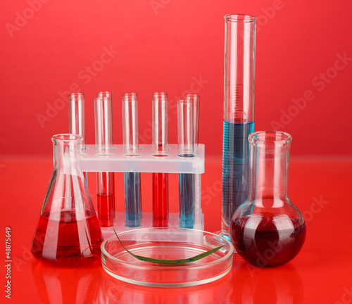 Test-tubes and green leaf tested in petri dish,