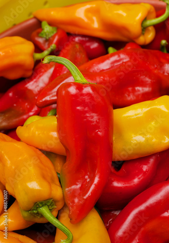 Red yellow orange chili peppers