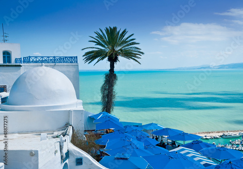 Sidi Bou Said, Tunis - 48877275