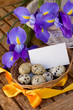 easter eggs and irises with greeting card