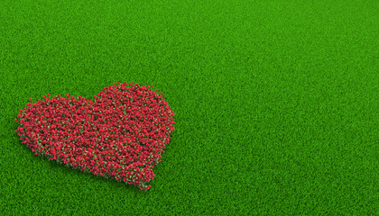 flowerbed of roses in a shape of heart