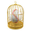 Birdcage with baseball locked inside