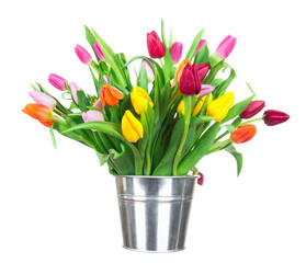 Beautiful tulips bouquet