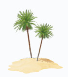 two palms on island