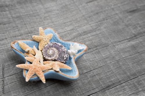 Dekoration mit Muscheln und Seesternen