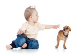 funny baby boy and dog isolated on white background