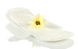 Panty liner and yellow flower isolated on white