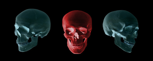 blue and red skulls