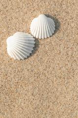 Zwei Herzmuscheln im Sand, Paar, Sommerurlaub zu zweit