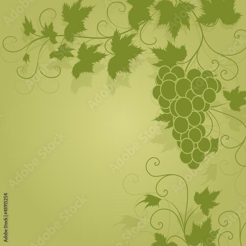 wein, weinblatt, weintraube, leaf, vines, deko, floral, vektor,