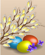 Pussy willow branches and easter eggs
