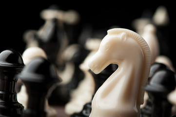 white chess knight