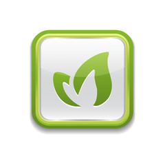 app eco leaves