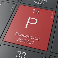 Phosphorus element from periodic table