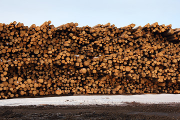 Stacked Timber, Lumber Mill
