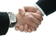 A handshake between two business persons on white