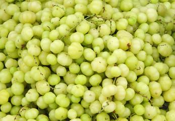 Fresh Indian Gooseberries