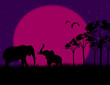 Silhouette illustration of a two elephants on night