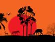 Africa / safari - silhouettes of wild animals