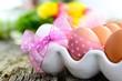 Ei mit Schleife im Eierbecher