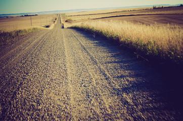 Gravel country road at sunset - Drumheller Alberta - LOMO