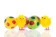 Easter with eggs and little chicks
