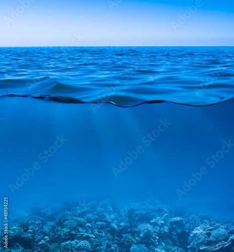 Canvas Koraalriffen still calm sea water surface with clear sky and underwater worl