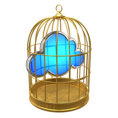 Birdcage with cloud inside