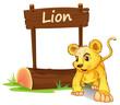 A little lion