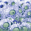 Background. flowers